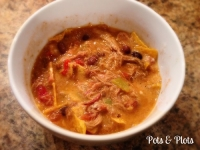 Pulled Pork Tortilla Soup